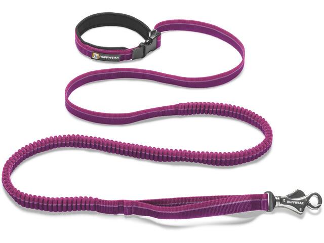 Ruffwear Roamer Sprzęt dla zwierząt L fioletowy